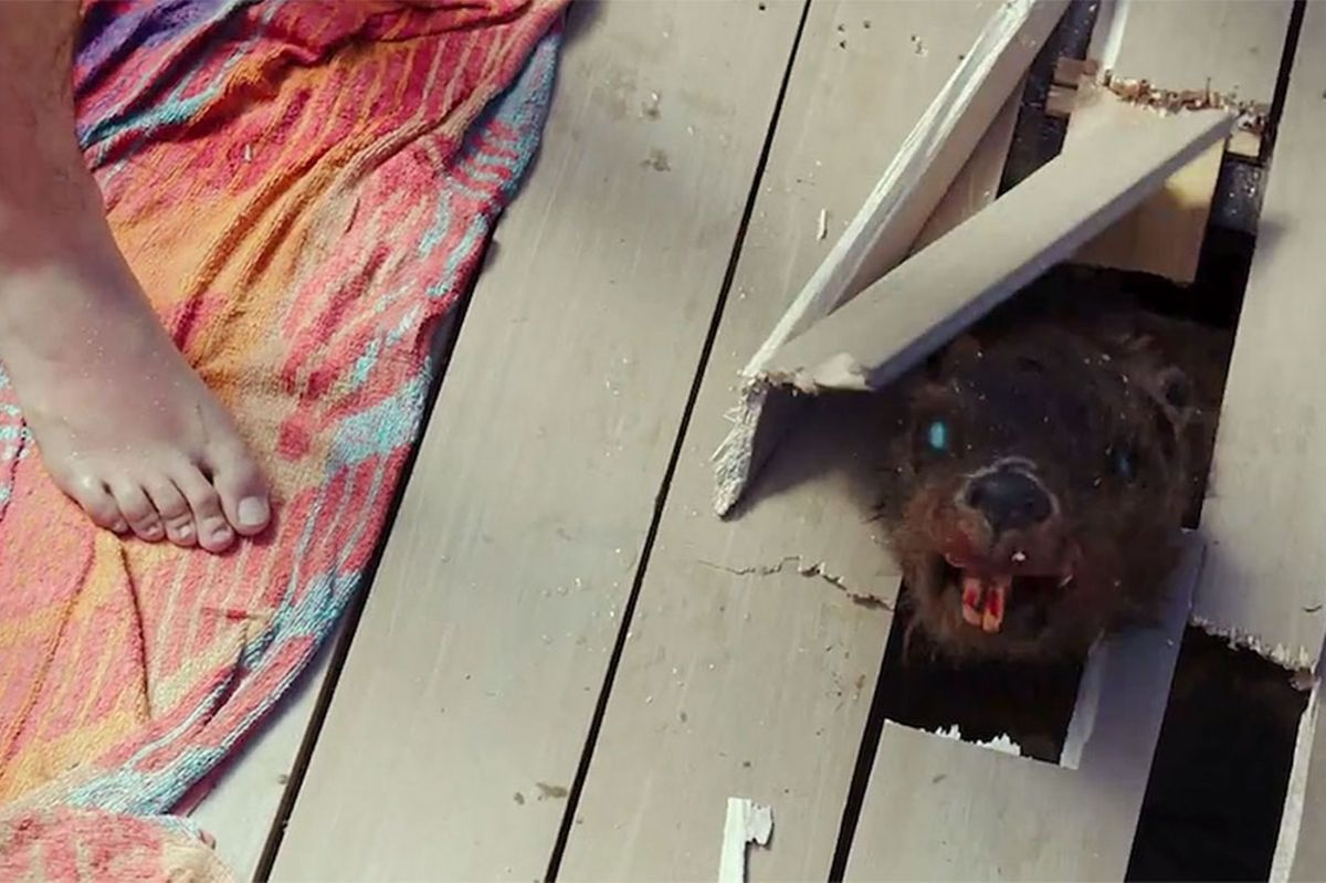 One Word: Zombeavers